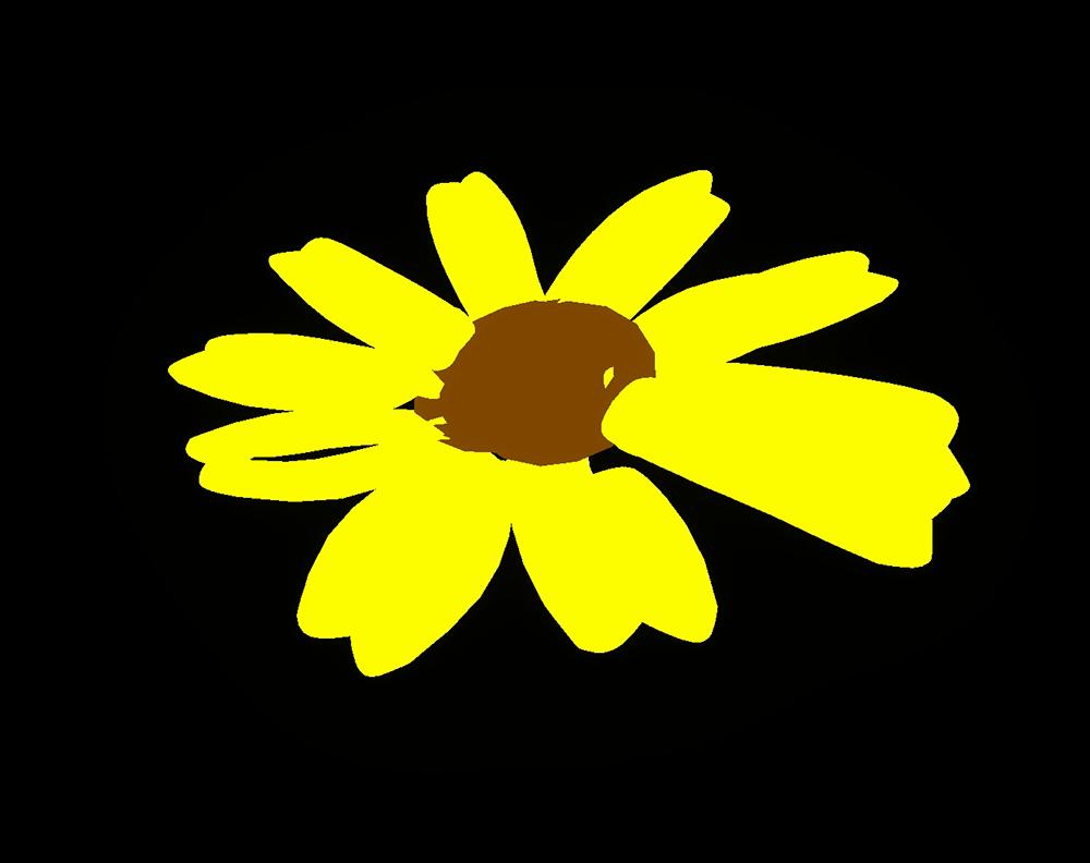 花びらの例