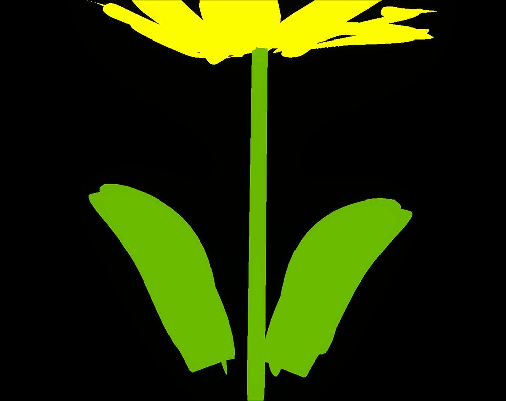 葉っぱの例