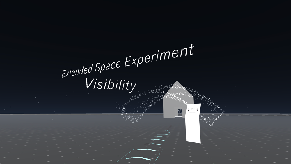 Extended Space Experiment Visibility