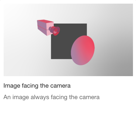 image facing the camera